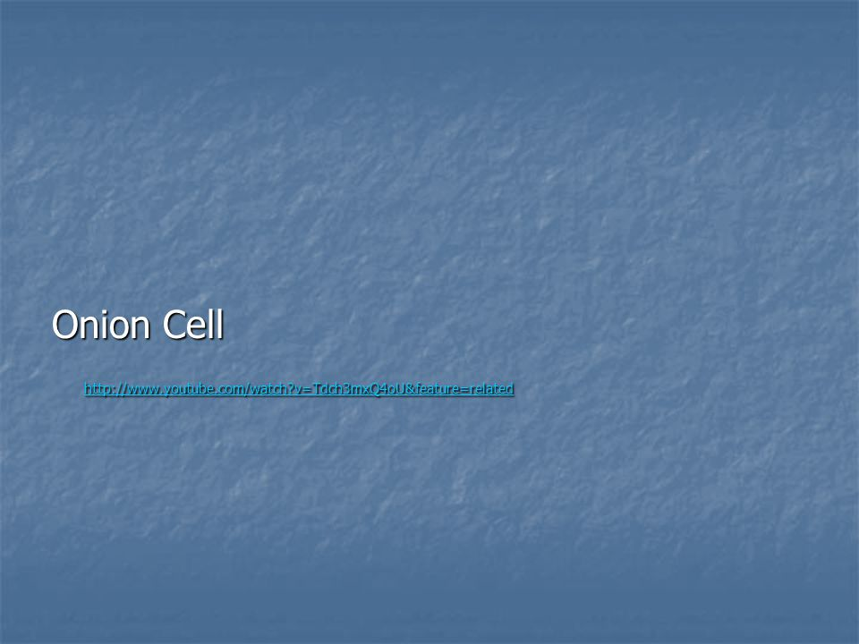 Onion Cell http://www.youtube.com/watch v=Tdch3mxQ4oU&feature=related