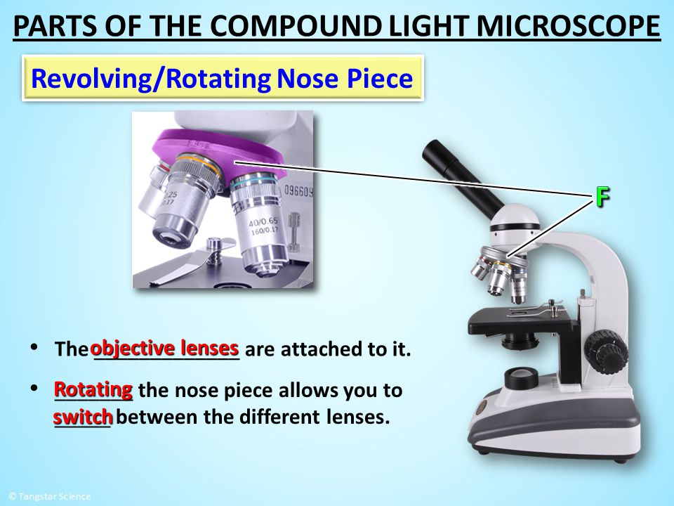 Revolving/Rotating Nose Piece