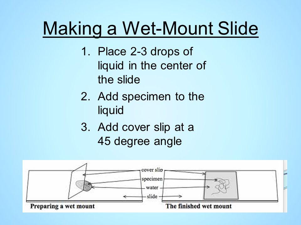 Making a Wet-Mount Slide