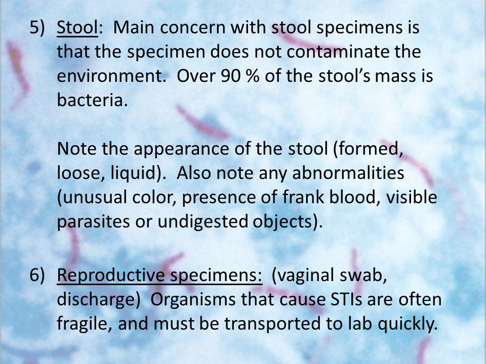 Stool: Main concern with stool specimens is that the specimen does not contaminate the environment. Over 90 % of the stool's mass is bacteria. Note the appearance of the stool (formed, loose, liquid). Also note any abnormalities (unusual color, presence of frank blood, visible parasites or undigested objects).