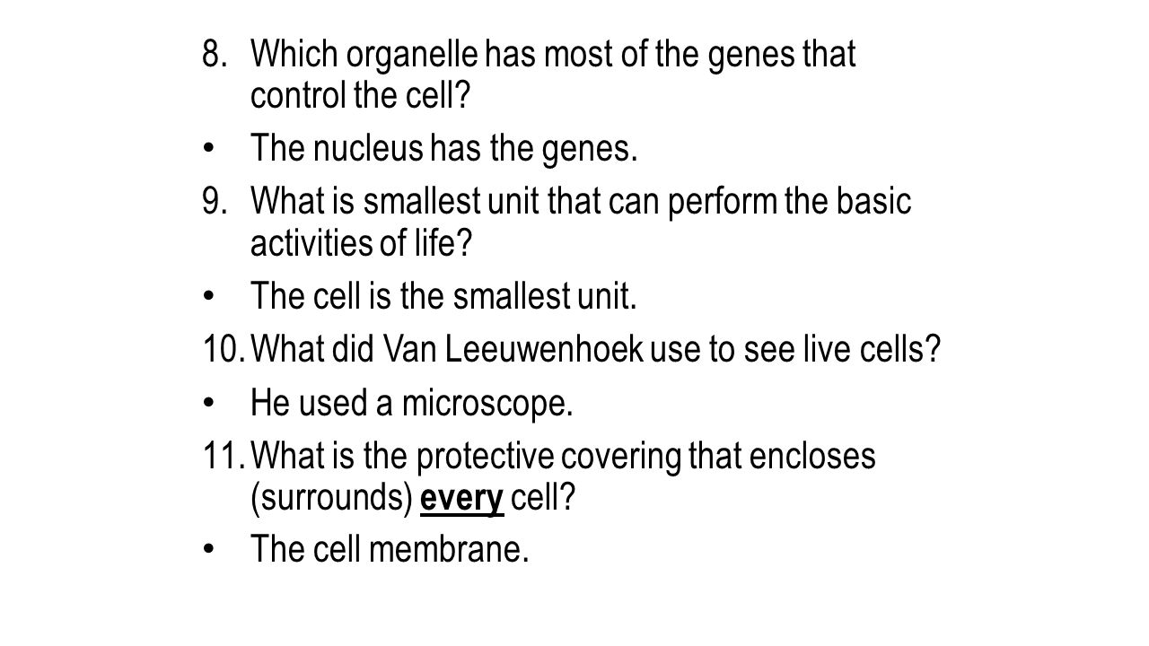 Which organelle has most of the genes that control the cell
