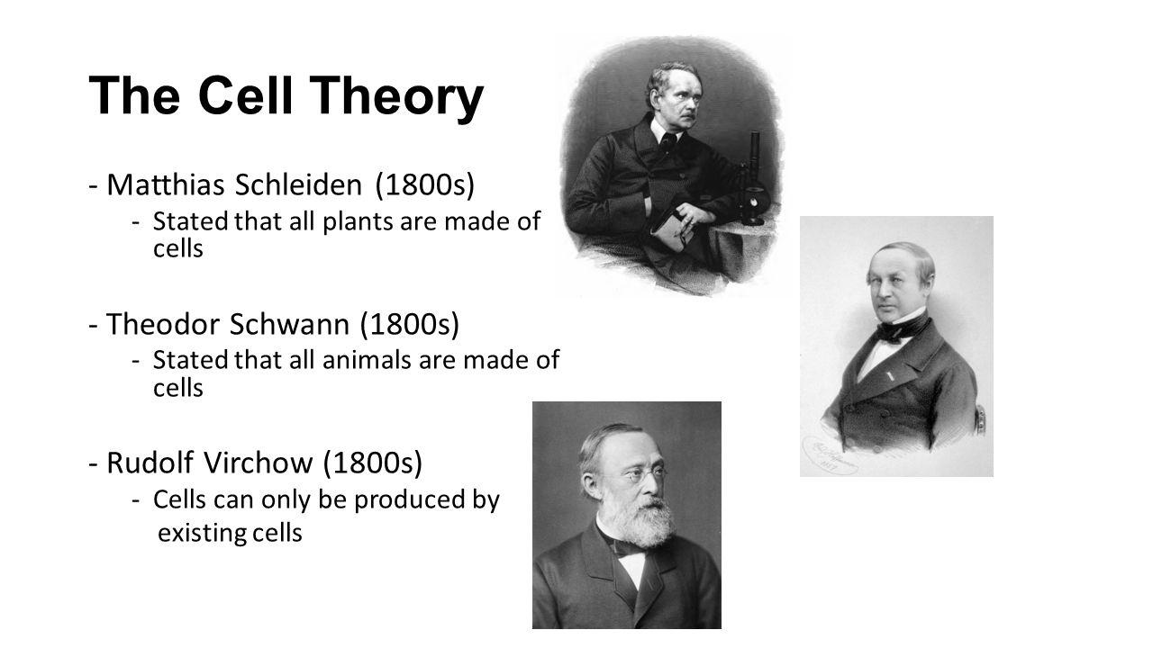 The Cell Theory - Matthias Schleiden (1800s) - Theodor Schwann (1800s)