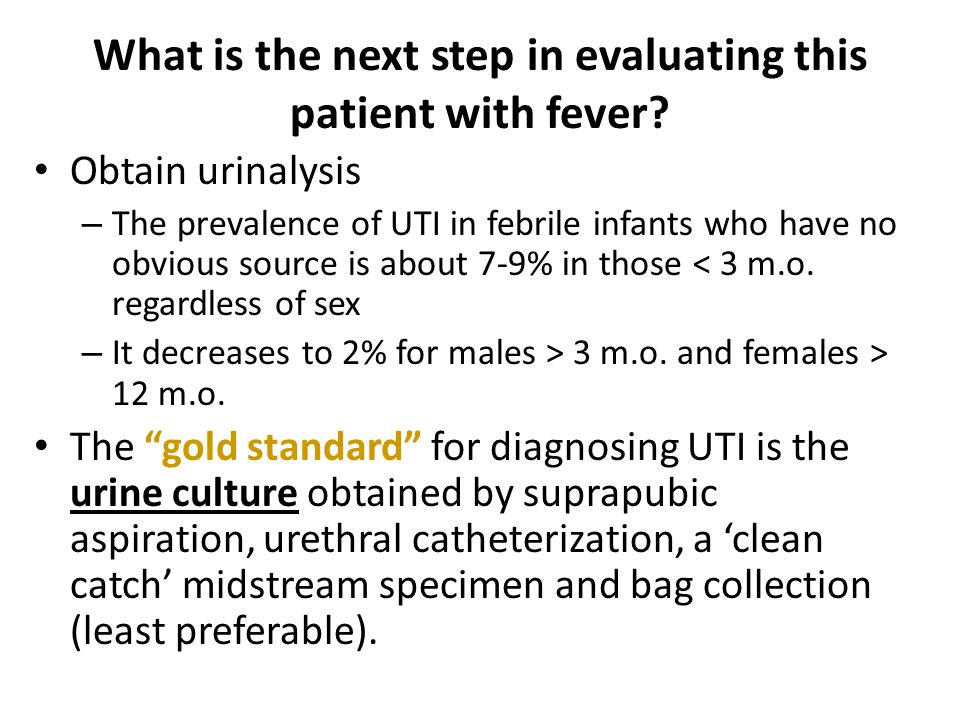 What is the next step in evaluating this patient with fever
