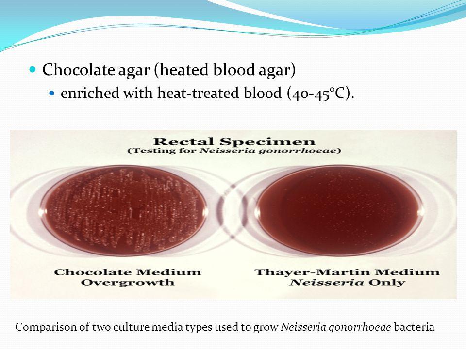 Chocolate agar (heated blood agar)