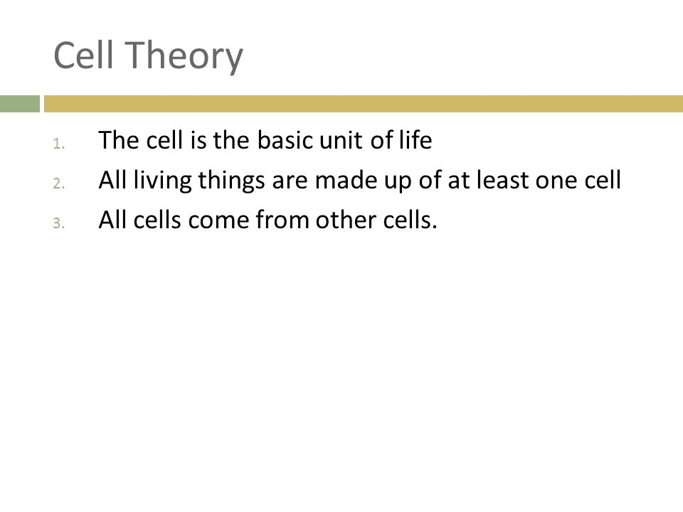 Cell Theory The cell is the basic unit of life