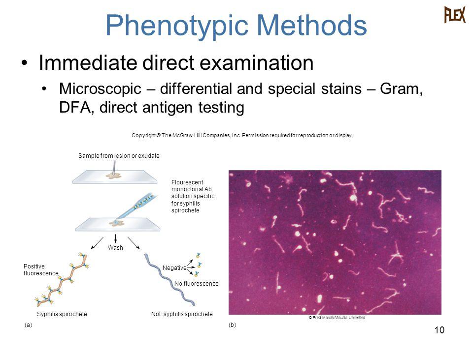 Phenotypic Methods Immediate direct examination