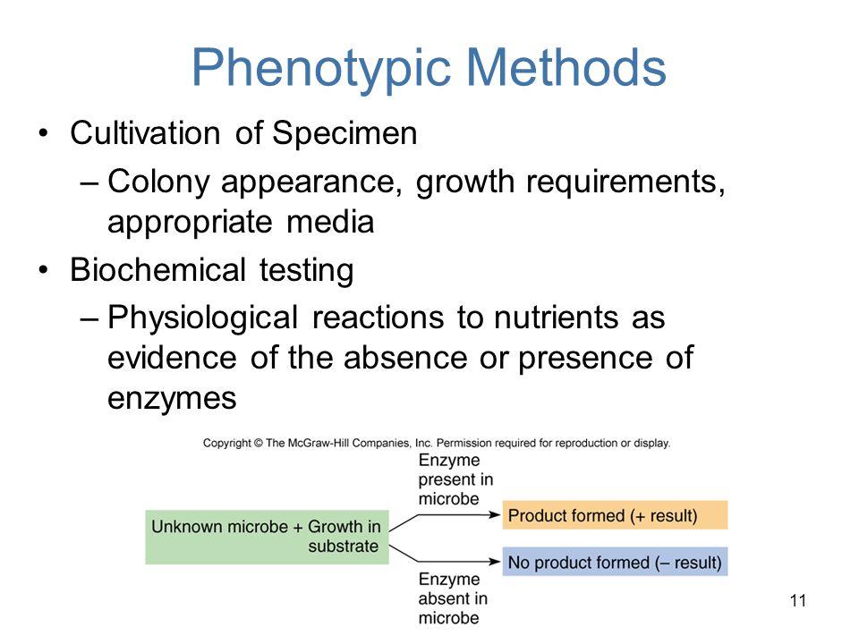 Phenotypic Methods Cultivation of Specimen