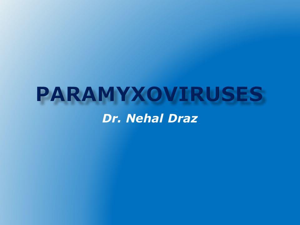 Paramyxoviruses Dr. Nehal Draz