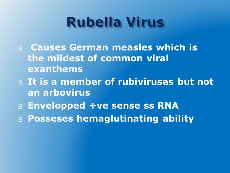Rubella Virus Causes German measles which is the mildest of common viral exanthems. It is a member of rubiviruses but not an arbovirus.