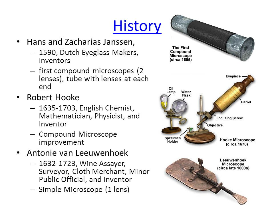 History Hans and Zacharias Janssen, Robert Hooke