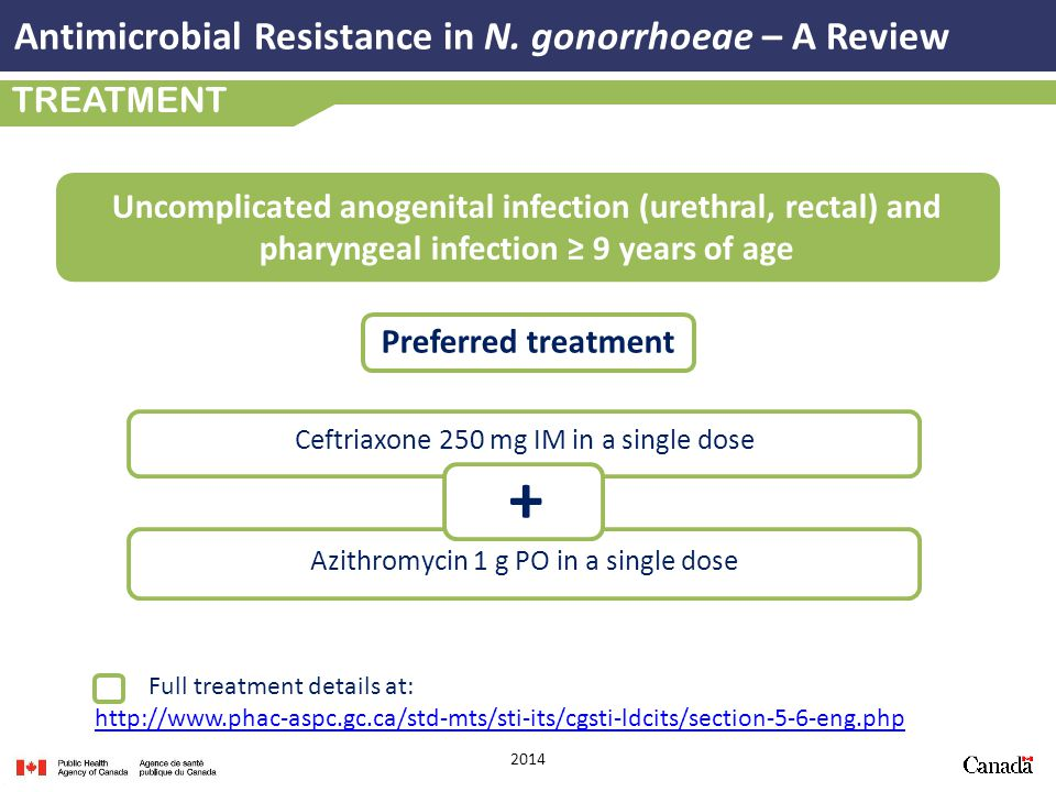+ Antimicrobial Resistance in N. gonorrhoeae – A Review TREATMENT