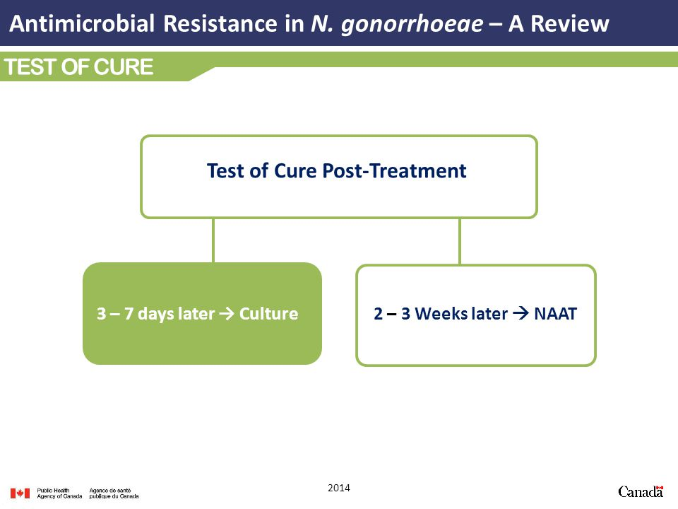 Test of Cure Post-Treatment