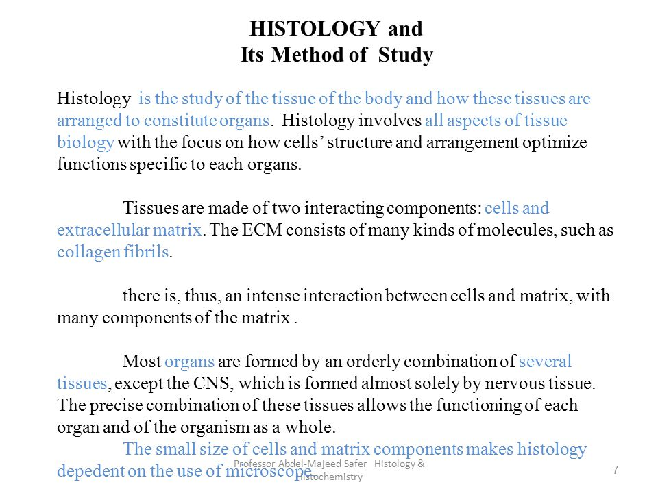 Professor Abdel-Majeed Safer Histology & Histochemistry