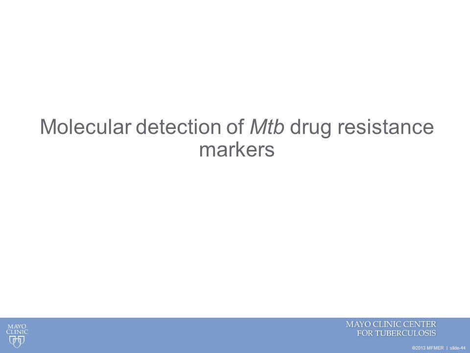 Molecular detection of Mtb drug resistance markers