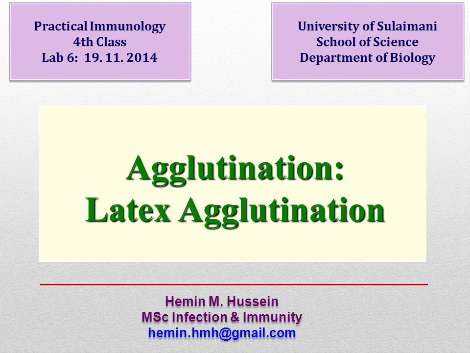 Agglutination: Latex Agglutination