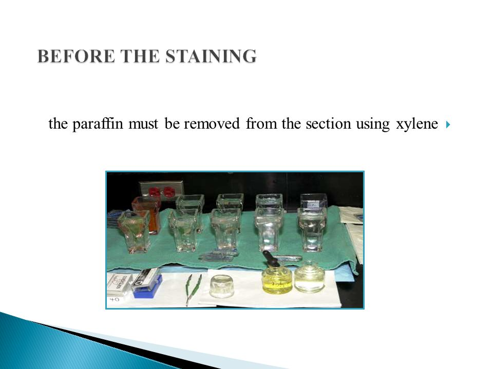 BEFORE THE STAINING the paraffin must be removed from the section using xylene