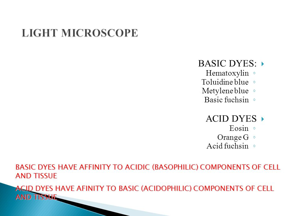 LIGHT MICROSCOPE BASIC DYES: ACID DYES Hematoxylin Toluidine blue