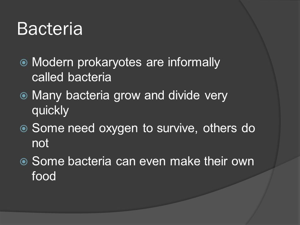Bacteria Modern prokaryotes are informally called bacteria