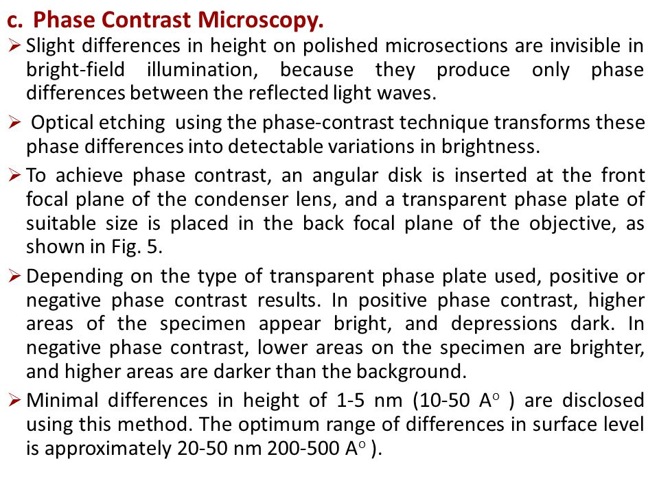 Phase Contrast Microscopy.