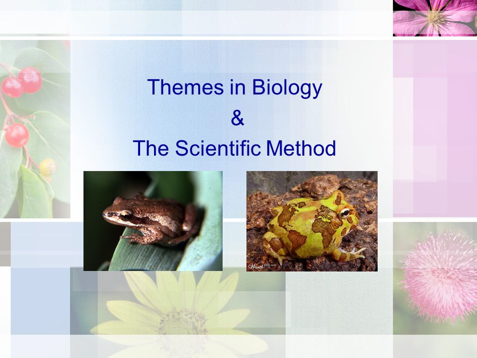Themes in Biology & The Scientific Method