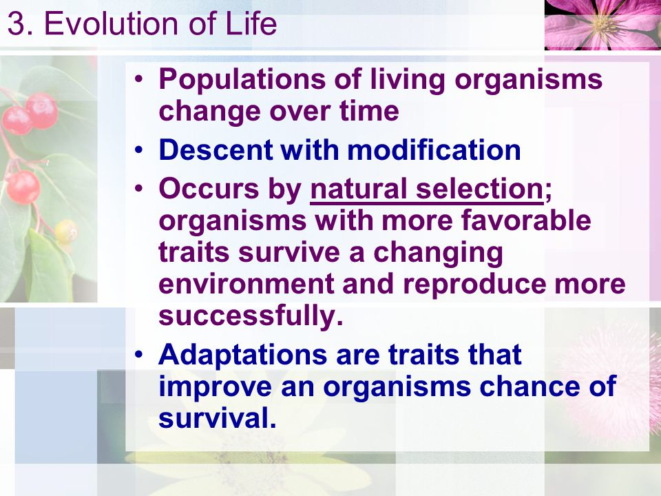 3. Evolution of Life Populations of living organisms change over time