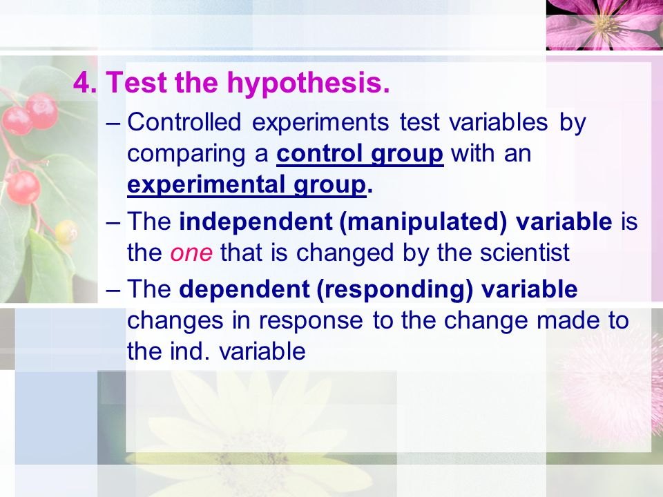 4. Test the hypothesis. Controlled experiments test variables by comparing a control group with an experimental group.