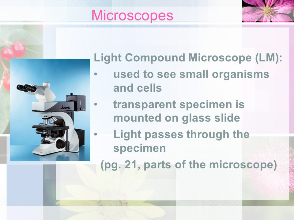 (pg. 21, parts of the microscope)