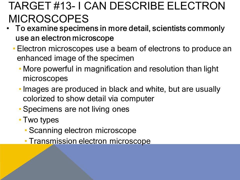 Target #13- I can describe electron microscopes
