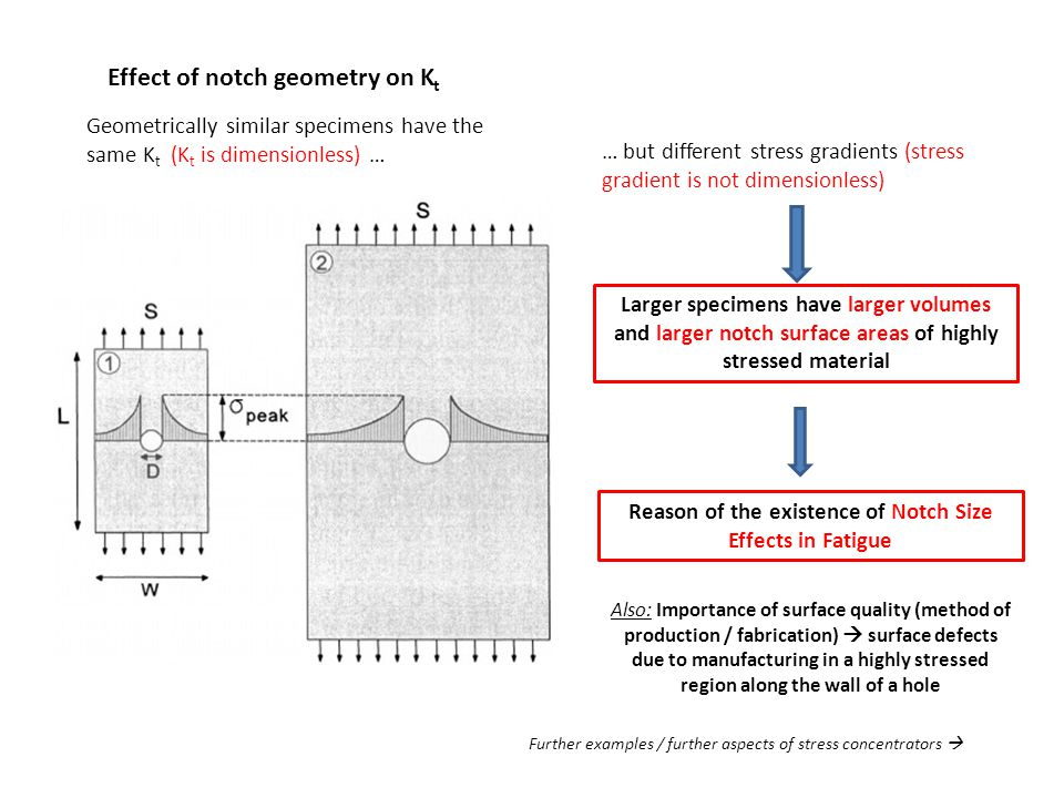 Reason of the existence of Notch Size Effects in Fatigue