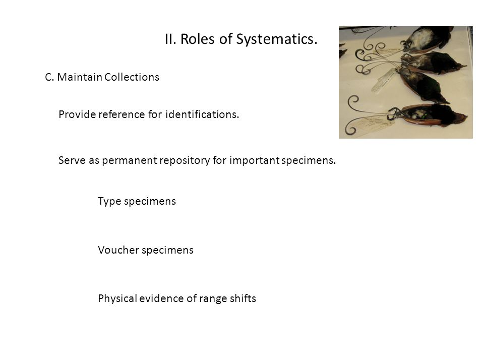 II. Roles of Systematics.