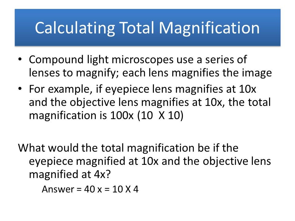 Calculating Total Magnification