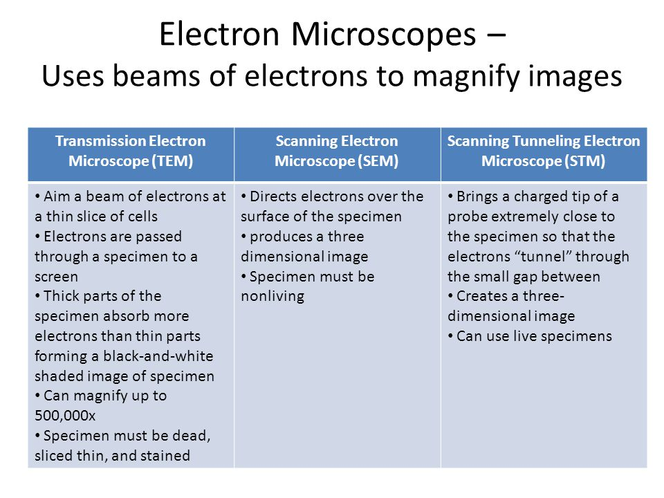 Electron Microscopes – Uses beams of electrons to magnify images