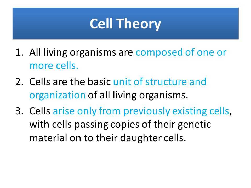 Cell Theory All living organisms are composed of one or more cells.