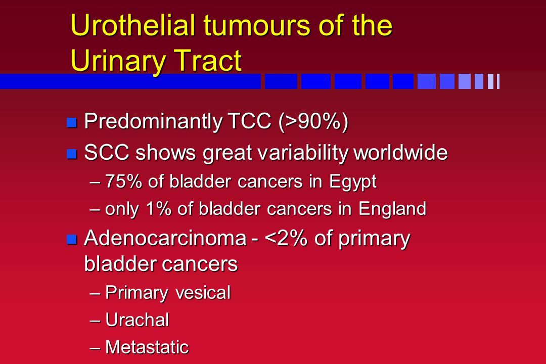 Urothelial tumours of the Urinary Tract