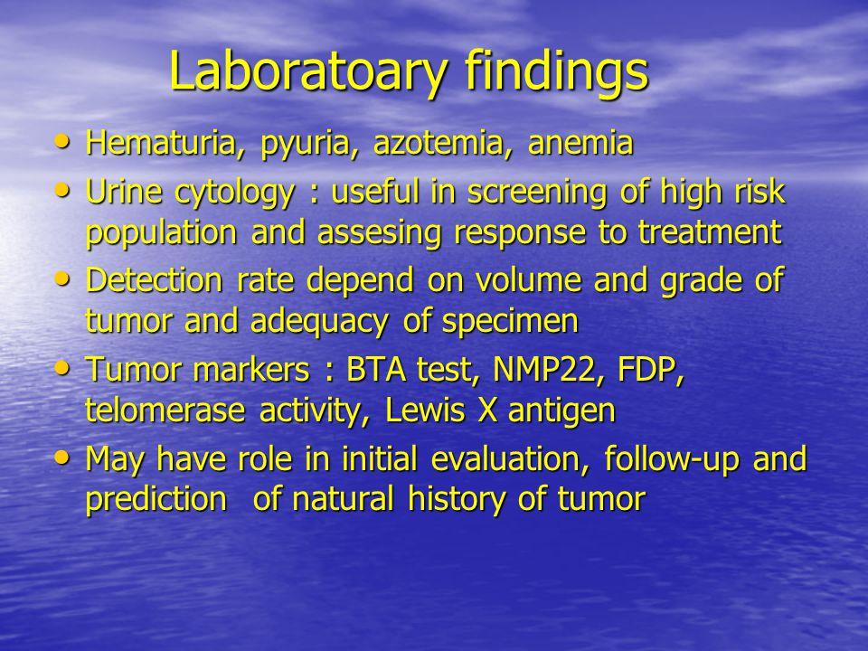 Laboratoary findings Hematuria, pyuria, azotemia, anemia