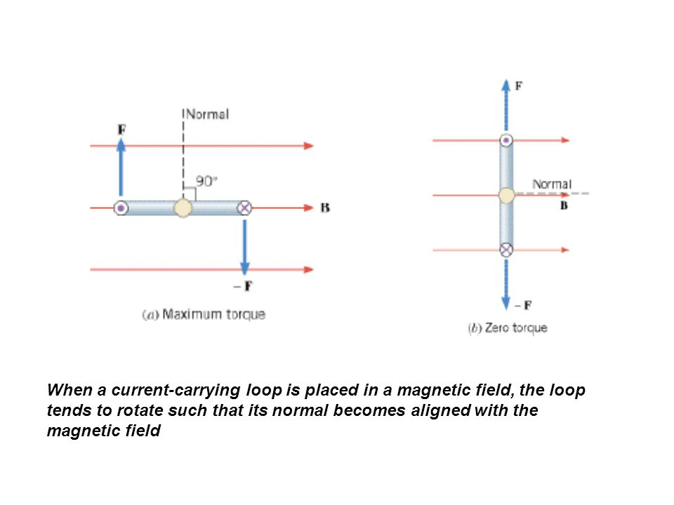 When a current-carrying loop is placed in a magnetic field, the loop tends to rotate such that its normal becomes aligned with the magnetic field