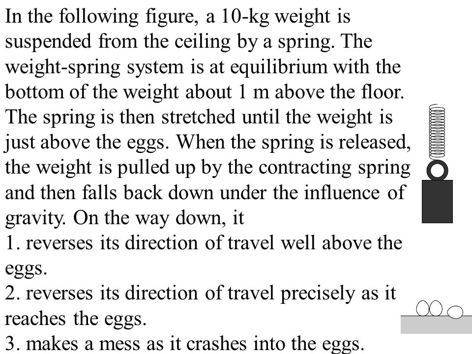In the following figure, a 10-kg weight is suspended from the ceiling by a spring. The weight-spring system is at equilibrium with the bottom of the weight about 1 m above the floor. The spring is then stretched until the weight is just above the eggs. When the spring is released, the weight is pulled up by the contracting spring and then falls back down under the influence of gravity. On the way down, it