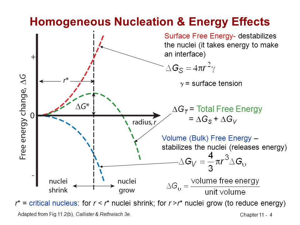 Homogeneous Nucleation & Energy Effects