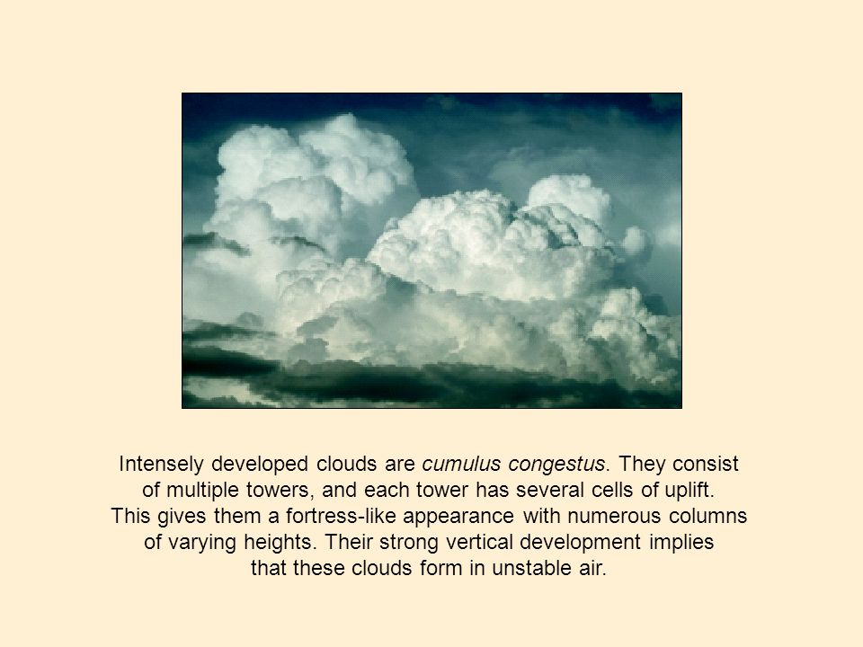 Intensely developed clouds are cumulus congestus. They consist