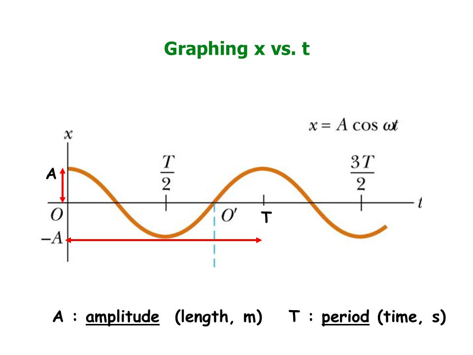 Graphing x vs. t A : amplitude (length, m) T : period (time, s) A T