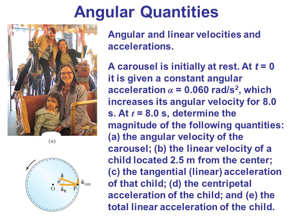 Angular Quantities Angular and linear velocities and accelerations.