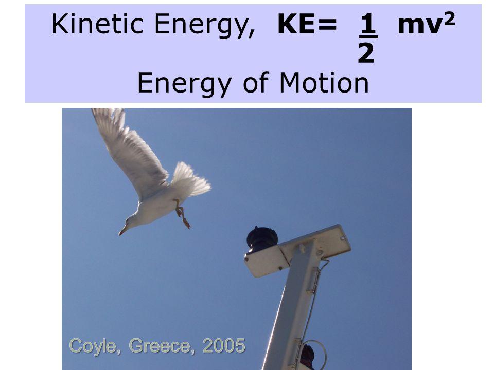 Kinetic Energy, KE= 1 mv2 2 Energy of Motion