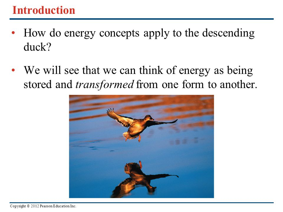 Introduction How do energy concepts apply to the descending duck