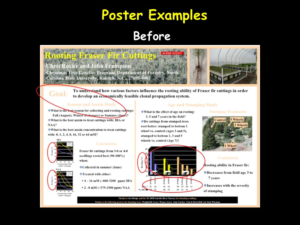 Poster Examples Before