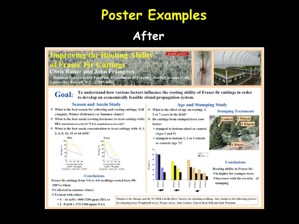 Poster Examples After