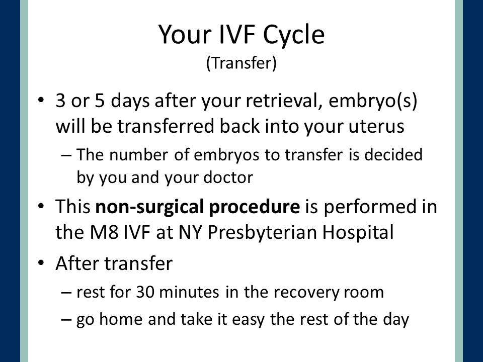 Your IVF Cycle (Transfer)