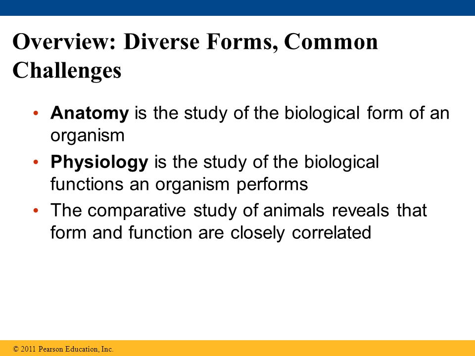 Overview: Diverse Forms, Common Challenges