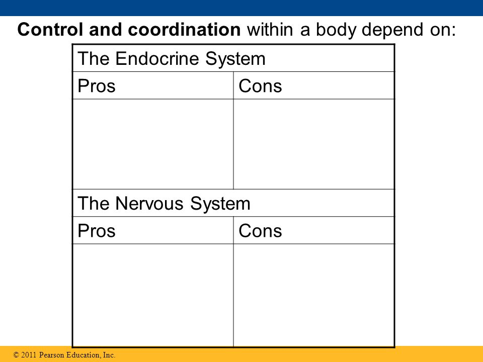 Control and coordination within a body depend on: The Endocrine System