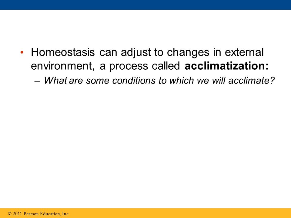 Homeostasis can adjust to changes in external environment, a process called acclimatization: