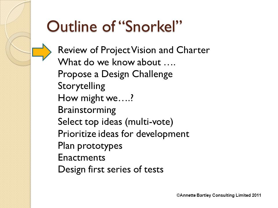 Outline of Snorkel Review of Project Vision and Charter